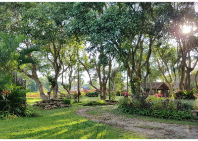garden around hotel chiang khong
