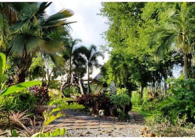 Garden around resort